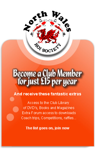 Become a Full Member