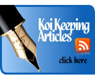 Koi Keeping Articles